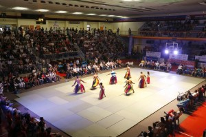 Festival-des-arts-martiaux_imagegallery1